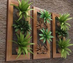 Vách gỗ trồng cây trong nhà