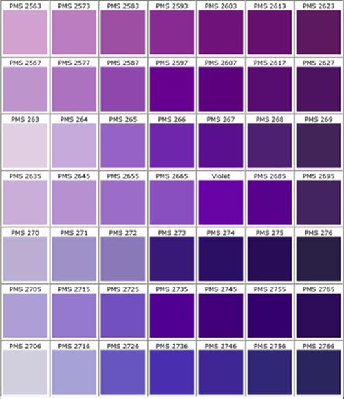 bảng sơn phòng ngủ màu tím