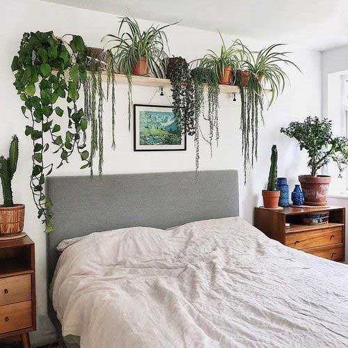 Phủ xanh phòng ngủ bằng các chậu cây nhỏ nội thất